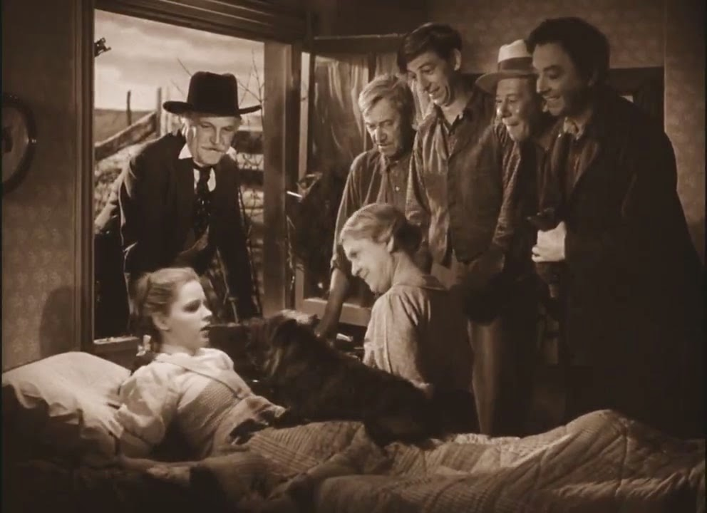 Image result for wizard of oz dream
